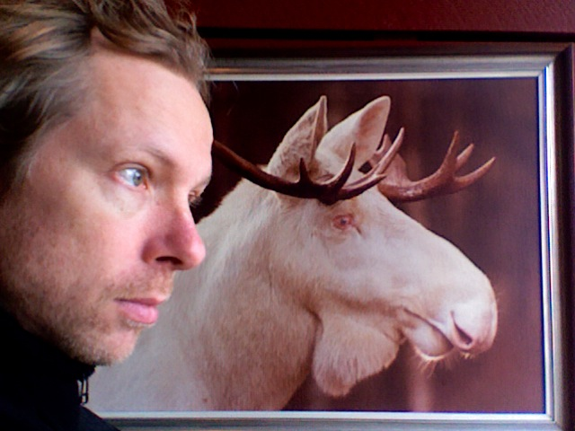 Johannes Bergmark in front of a picture of an albino elk.